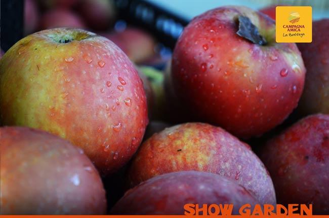 La spesa di stagione: frutta e verdura di gennaio